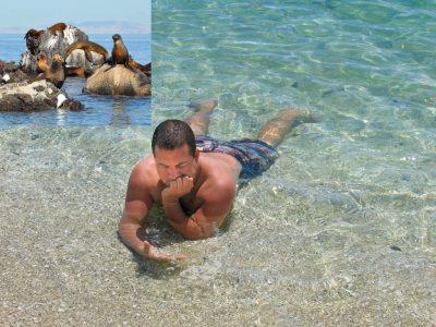 Balandra and Sea Lion Snorkel