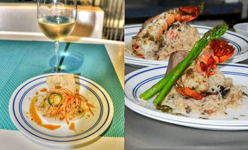 Baja Spirits and Culinary Cruise