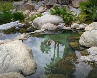 Mountain Hot Springs and Ranch Visit